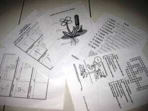 kinds of worksheets about plants (scramble words, observation forms, crosswords...