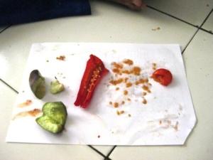 terong, cabe, tomat: bentuk bijinya sama. Mereka satu suku: solanaceae